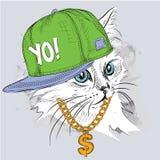 El cartel con el retrato del gato de la imagen en sombrero del hip-hop Ilustración del vector Fotos de archivo