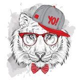 El cartel con el retrato del tigre de la imagen en sombrero del hip-hop Ilustración del vector Imagen de archivo libre de regalías