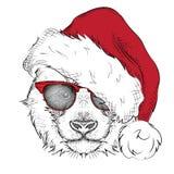 El cartel de la Navidad Fotografía de archivo libre de regalías