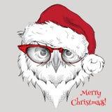 El cartel de la Navidad con el retrato del búho de la imagen en el sombrero de Papá Noel Ilustración del vector Fotos de archivo libres de regalías