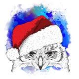 El cartel de la Navidad con el retrato del búho de la imagen en sombrero del ` s de Papá Noel Ilustración del vector Fondo abstra Foto de archivo