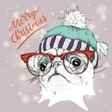 El cartel de la Navidad con el retrato del barro amasado de la imagen en sombrero del invierno Ilustración del vector Foto de archivo libre de regalías