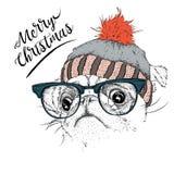 El cartel de la Navidad con el retrato del barro amasado de la imagen en sombrero del invierno Ilustración del vector Imagenes de archivo