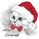 El cartel de la Navidad con el retrato del gato de la imagen en el sombrero de Papá Noel Ilustración del vector Ilustración del v Fotografía de archivo libre de regalías