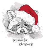 El cartel de la Navidad con el retrato del mapache de la imagen en el sombrero de Papá Noel Tienda extrema del deporte Foto de archivo