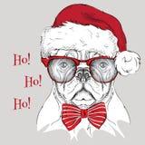 El cartel de la Navidad con el retrato del perro de la imagen en el sombrero de Papá Noel Ilustración del vector Fotos de archivo