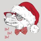 El cartel de la Navidad con el retrato del zorro de la imagen en el sombrero de Papá Noel Ilustración del vector Fotografía de archivo libre de regalías