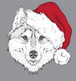 El cartel de la Navidad con el retrato fornido de la imagen en el sombrero de Papá Noel Tienda extrema del deporte Fotos de archivo