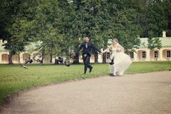 Día de boda fotografía de archivo libre de regalías