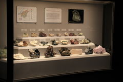 El caso de cristal grande con filas de minerales encontró en Nueva York, museo del estado, 2016 Foto de archivo