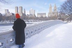 El casquillo de media rojo del hombre mira la charca en la nieve fresca en Central Park, Manhattan, New York City, NY Fotografía de archivo libre de regalías