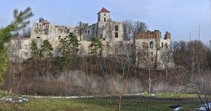 El castillo arruina Tenczyn Imágenes de archivo libres de regalías