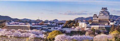 El castillo de Japón Himeji con se enciende para arriba en la cereza de Sakura imagenes de archivo