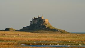 El castillo de Lindisfarne se coloca solamente al borde de la isla santa fotografía de archivo