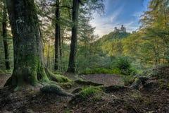 El castillo de Wartburg Foto de archivo