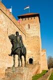 El castillo en Gyula Fotografía de archivo