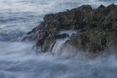 El causar un crash agita en coral Foto de archivo libre de regalías