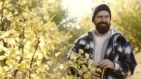 El cazador en camuflaje viste listo para cazar con el rifle de la caza Caza de la fauna metrajes