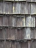 El cedro resistido sacude en el lado de una dependencia en el centro turístico de la cabaña de madera en creciente del lago en el imágenes de archivo libres de regalías