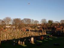 El cementerio y las ruinas de la abadía de Arbroath Foto de archivo libre de regalías