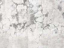 El cemento gris del fondo del muro de cemento agrietó el web de araña del modelo de la textura Foto de archivo