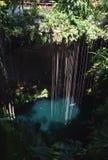 El cenote en el parque arqueológico de Ik Kil cerca de Chichen Itza, México Imágenes de archivo libres de regalías