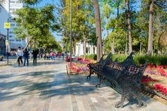 El Central Park de Alameda en el centro histórico de Ciudad de México Imagen de archivo
