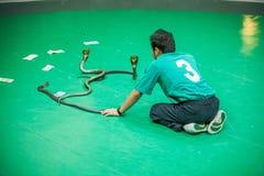 El centro de investigación tailandés de la serpiente muestra a serpientes el funcionamiento Pasillo Fotos de archivo libres de regalías