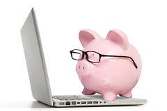 El cerdo y el ordenador portátil rosados Fotografía de archivo libre de regalías