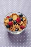 El cereal forma escamas con la baya Fotografía de archivo libre de regalías