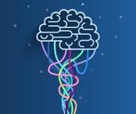 El cerebro está conectado con la red Fotografía de archivo libre de regalías