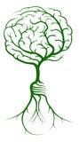 El cerebro ramifica las raíces de la bombilla Fotografía de archivo libre de regalías