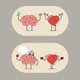 El cerebro y el corazón, cerebro de la etiqueta engomada de la historieta del trabajo en equipo y corazón Imagen de archivo