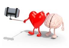 El cerebro y el corazón toman un autorretrato con su teléfono elegante Fotografía de archivo