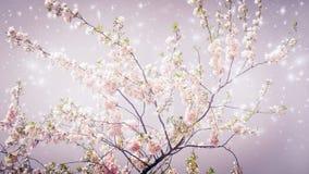 Primavera mágica Imágenes de archivo libres de regalías