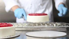 El chef de repostería de las manos prepara una torta, cubierta con la formación de hielo y la adorna con las fresas, trabajos sob almacen de video