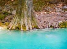 El Chiflon自然公园,恰帕斯州,墨西哥 5月25日 免版税库存照片