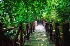 El Chiflon Natural Park, Chiapas, Mexico. May 25 Stock Images