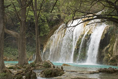 Waterfall in jungle stock photos
