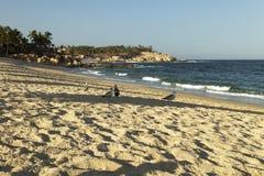 El Chileno海滩在Los Cabos 图库摄影