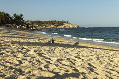 El Chileno beach in Los Cabos. Mexico Stock Photography