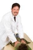 El Chiropractor cómodo da el ajuste Foto de archivo