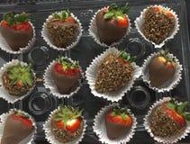 El chocolate cubrió las fresas Fotos de archivo libres de regalías