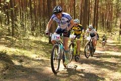 El ciclista compite en la raza de la élite MTB en el bosque Foto de archivo