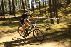 El ciclista compite en la raza de la élite MTB en el bosque Fotografía de archivo libre de regalías