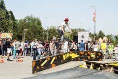 El ciclista de BMX realiza un salto del truco Fotos de archivo libres de regalías