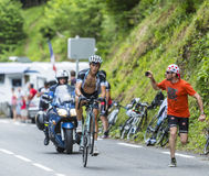 El ciclista Mateo Trentin Imagenes de archivo