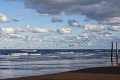 El cielo azul sobre Daytona Beach, la Florida, los E.E.U.U. foto de archivo