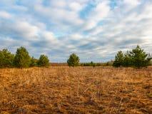 El cielo azul sobre el campo Fotos de archivo libres de regalías