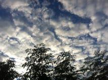 El cielo de la tarde Fotografía de archivo libre de regalías